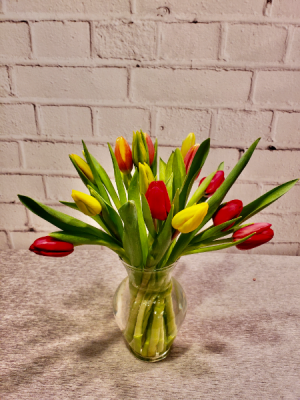 Cheerful Holland Tulips Vase Arrangement in Charlotte, NC | FLOWERS PLUS