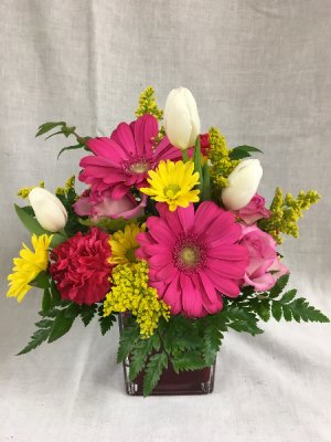 Cheerful Thoughts Arrangement in Cherokee, IA | Blooming House