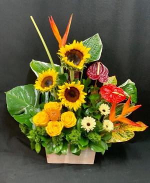 Cheerful Tropical Arrangement  in Miami, FL | EXOTIC FLOWERS OF MIAMI