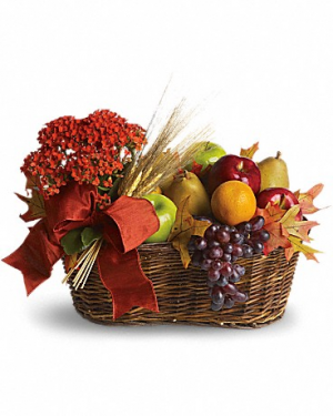 Cheerfulness Floral/Fruit Basket in Magnolia, TX | ANTIQUE ROSE FLORIST