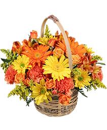 Cheergiver Basket