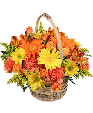Cheergiver Basket in Richmond, VT | CRIMSON POPPY