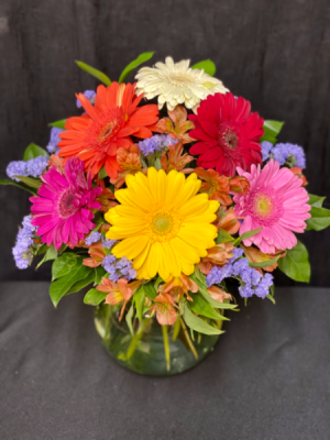 Cheery Daisy Boquet   in Friona, TX | Ivy Cottage Flowers Gifts & Greenhouse