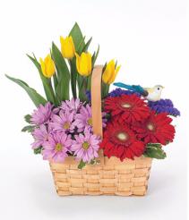 Cheery Flower Garden get well