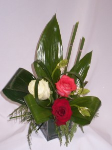 CHERISH - Prince George BC Best Wishes Flowers: AMAPOLA BLOSSOMS. Good Luck Flowers Prince George BC