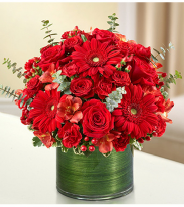 Cherished Memories™ All Red Sympathy Arrangement