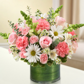 Cherished Memories™ Pink and White Sympathy Arrangement