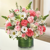 Cherished Memories Sympathy Flowers Delivery