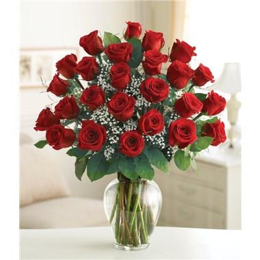Cherub 24 Roses