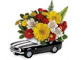 Chevy Camaro 67;Chevy Camero