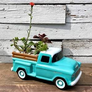 Chevy Pickup Succulent Garden