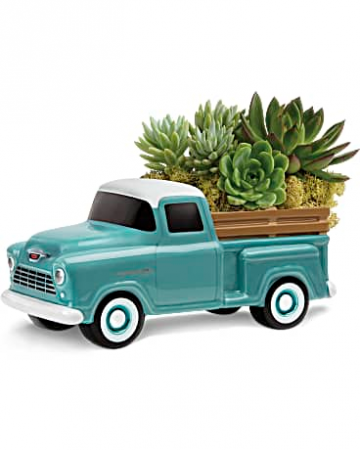 Chevy Pickup Succulent Garden Blooms for Him