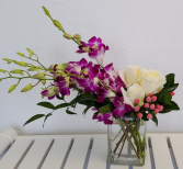 Chic Orchids