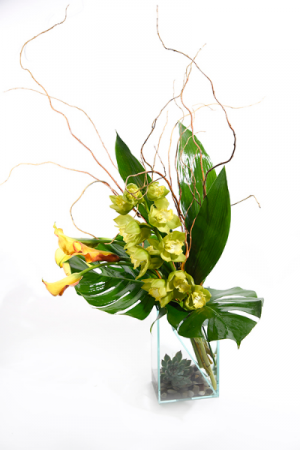 Chic Orchids and Callas