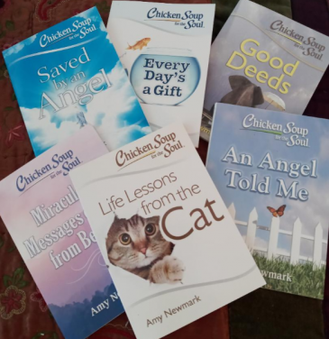 Chicken Soup For The Soul - BOOK LOT