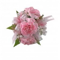 Child Carnation Wrist Corsage