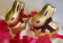 Chocolate Bunny time! Chocolates