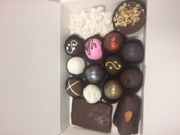 Chocolate Gourmet 15 Pieces Delicious Variety