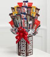 Chocolate Lover's Dream
