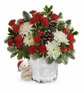 Christmas 17* Send a Hug Bear BuddyT17X500