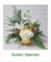Golden Splendor