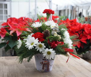 Christmas Arrangement in Snowman Container  in Vincennes, IN | ORGAN FLORIST & GREENHOUSES