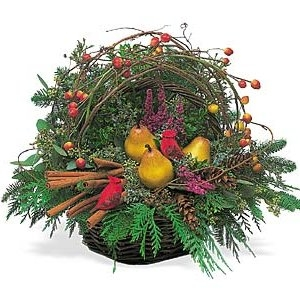 Christmas birds nest Basket in Katy, TX | KD'S FLORIST & GIFTS