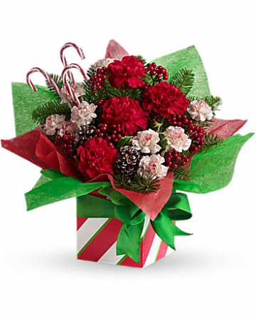 Christmas candy cane present Assorted Christmas carnations/gift boxes