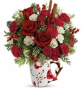 Christmas Cardinal  in Clinton, AR   Main Street Florist & Gifts