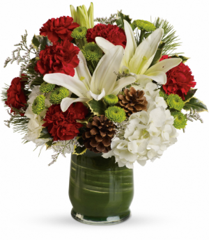 Christmas Collage Fresh Flowers in Tulsa, OK   THE WILD ORCHID FLORIST