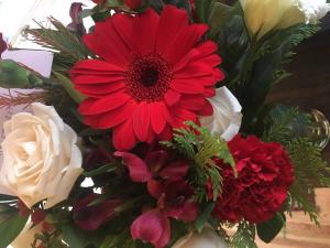 Colorado Springs Co Flower S Flowers Healthy