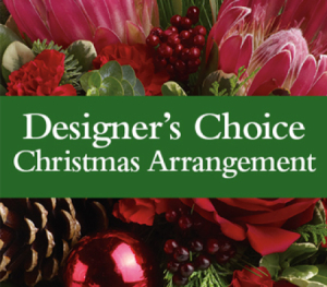 Christmas Design Designer Choice in Colorado Springs, CO | ENCHANTED FLORIST II