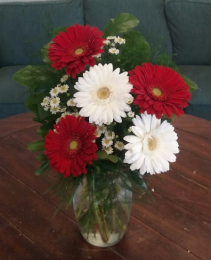 Christmas Gerbera Arrangement