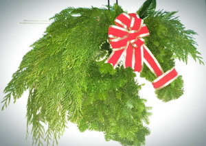 Christmas Horse Wreath Door Hanger in Milwaukie, OR | Mary Jean's Flowers by Poppies & Paisley
