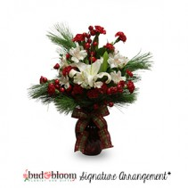 Holiday Joy Bud & Bloom Signature Arrangement