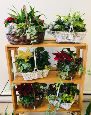 Christmas Planter Baskets Baskets