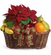 CHRISTMAS POINSETTIA & FRUIT HOLIDAY GIFT BASKET
