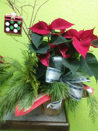 Christmas  Poinsettia with tree ornament SOLD OUT