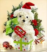 Christmas Puppy Christmas
