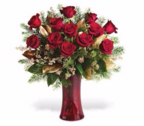 Roses for Christmas