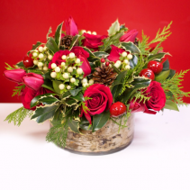 Christmas Roses with White Berries