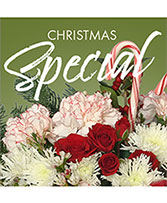 Christmas Special Designer's Choice