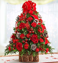 Christmas Tidings Tree with Cardinals Pine Bark Basket in Gainesville, FL | PRANGE'S FLORIST