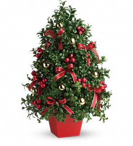 Michaels Christmas Trees.K Michael S Flowers Gifts