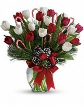 CHRISTMAS TULIPS Vase Arrangement