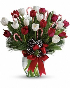 CHRISTMAS TULIPS Vase Arrangement