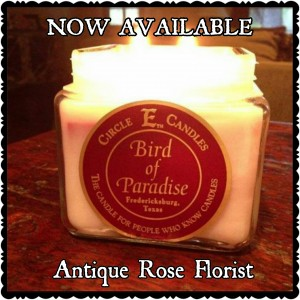 CIRCLE E CANDLES  SQUARE in Magnolia, TX | ANTIQUE ROSE FLORIST