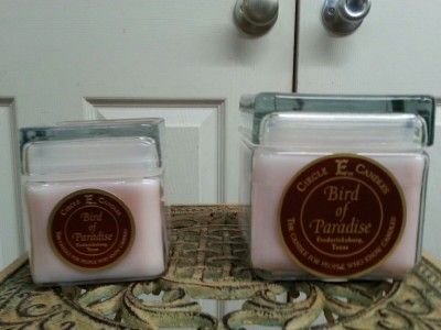 Circle E Candles in Bird of Paradise scent gift