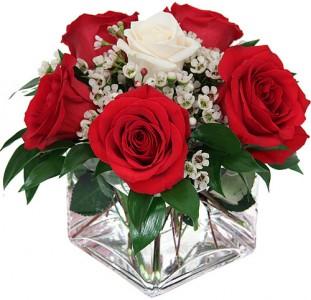 Rockville Florist Rockville Md Flower Shop Genes Rockville Florist