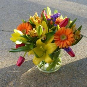 Citrus Cooler    Tulips, Alstromeria, Lilies and Gerbera Daisies in Mechanicsburg, PA   Garden Bouquet